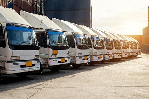 asegurar flota de camiones