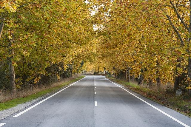 Es conveniente poner el vehículo a punto para el otoño. Por seguridad.