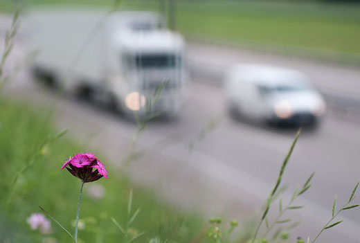 Seguros de Camiones y dispositivos de seguridad