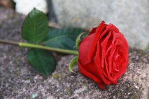 Seguro de decesos cubre el funeral