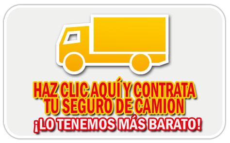 contrata seguros baratos de camión