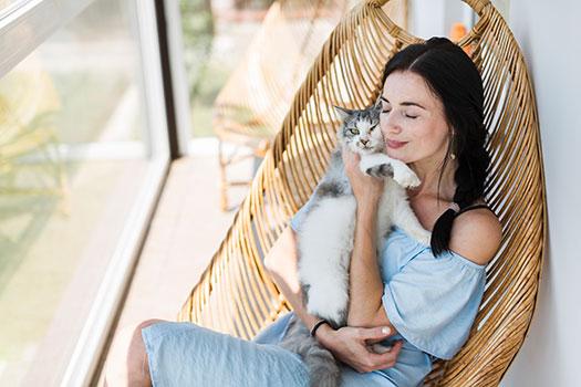 ¿Un Seguro para Gatos? 5 razones para tener asegurado a nuestra mascota