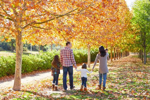 indemnización del seguro de vida - protección de la familia